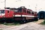 "LEW 11628 - DR ""142 112-2"" 11.06.1995 - Halle (Saale), Bahnbetriebswerk PFrank Weimer"