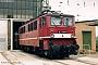 """LEW 11645 - DR """"142 129-6"""" 18.06.1992 - Weißenfels, BahnbetriebswerkFrank Weimer"""