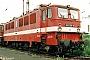 """LEW 12157 - DB AG """"142 166-8"""" __.05.1993 - Berlin-Schöneweide, BahnbetriebswerkRalf Brauner"""